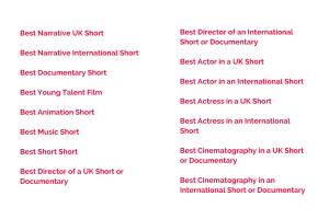 Best Narrative UK Short Best Narrative International ShortBest Documentary Short Best Young Talent Film AwardBest Animation Short ttle bit of body text (2)